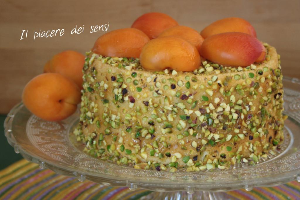 Chiffon-cake-con-albicocche-e-pistacchi